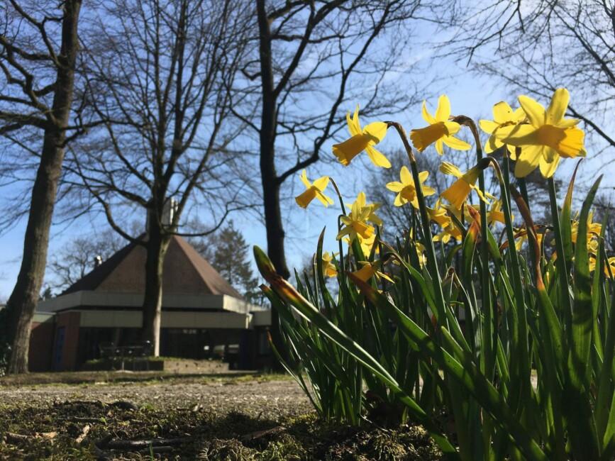 Lente in Lunteren